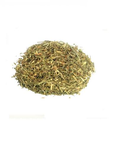 Chá de Quebra Pedra 30 Gramas